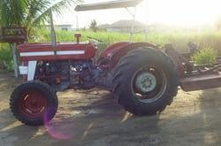 Te koop MF 135 tractor met maaibalk en achterblade